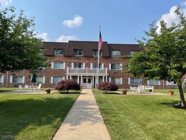 255 Tucker Ave, Union Twp., NJ 07083 (MLS #3728177) :: SR Real Estate Group