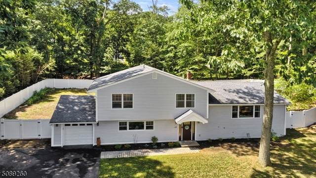 10 Chicasaw Dr, Oakland Boro, NJ 07436 (MLS #3728206) :: Gold Standard Realty