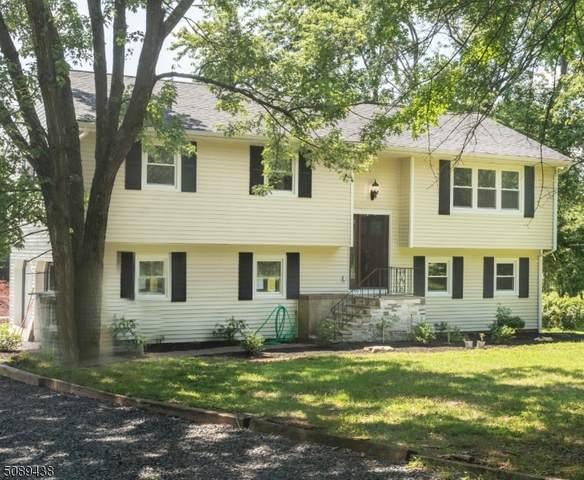 1 Tunis Cox Rd, Readington Twp., NJ 08889 (MLS #3728381) :: The Dekanski Home Selling Team