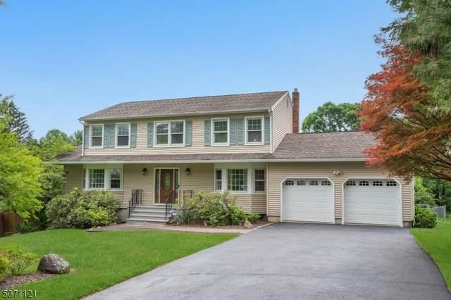 14 Regina Rd, Roxbury Twp., NJ 07876 (MLS #3728398) :: SR Real Estate Group