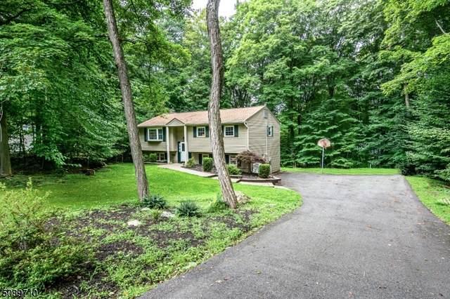 59 Brookwood Rd, Byram Twp., NJ 07874 (MLS #3728572) :: Coldwell Banker Residential Brokerage
