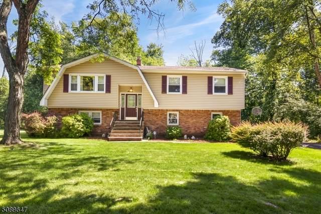 7 Brookside Ct, Parsippany-Troy Hills Twp., NJ 07054 (MLS #3728614) :: SR Real Estate Group
