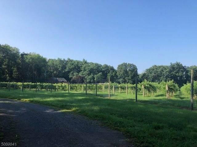 3 Esna Park, Washington Twp., NJ 07840 (MLS #3728683) :: SR Real Estate Group