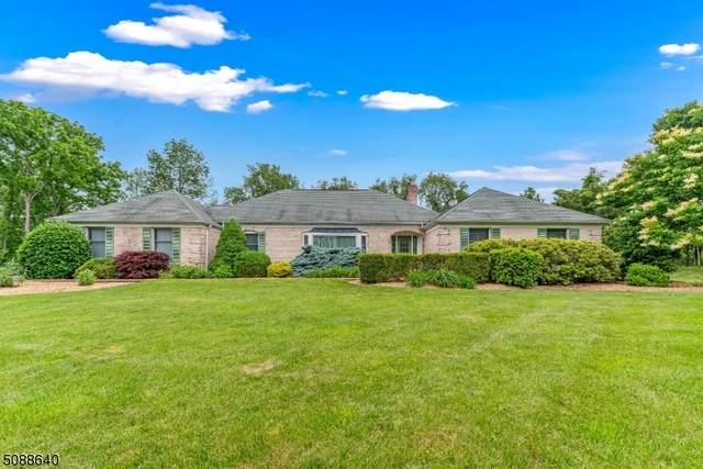 131 Pulaski Rd, Readington Twp., NJ 08889 (MLS #3728718) :: The Dekanski Home Selling Team