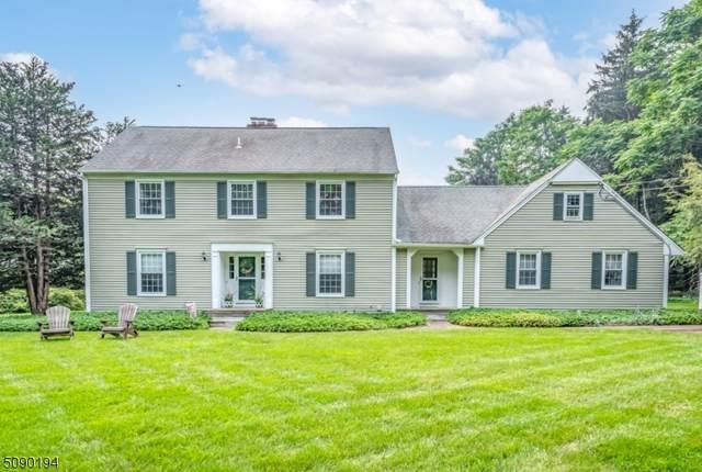 64 W Springtown Rd, Washington Twp., NJ 07853 (MLS #3729107) :: Stonybrook Realty
