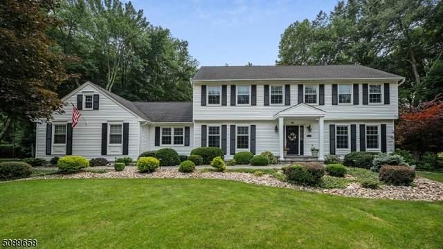 14 Apple Hill Rd, Hillsborough Twp., NJ 08844 (MLS #3729141) :: Coldwell Banker Residential Brokerage