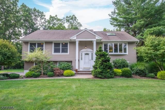 12 Marling Dr, Wayne Twp., NJ 07470 (MLS #3729166) :: The Dekanski Home Selling Team
