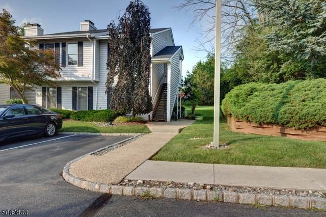 384 Burdock Ct #384, Readington Twp., NJ 08887 (MLS #3729207) :: The Dekanski Home Selling Team