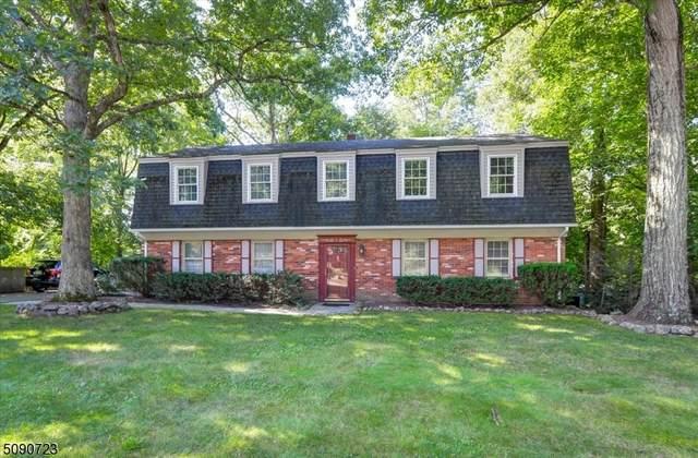 8 Sharon Ct, Ringwood Boro, NJ 07456 (MLS #3729538) :: Stonybrook Realty