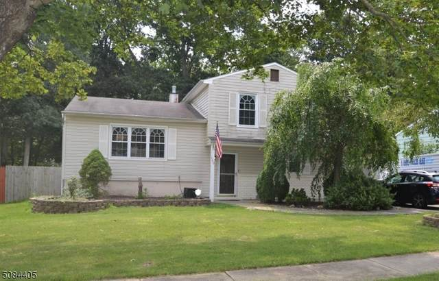 169 College View Dr, Hackettstown Town, NJ 07840 (MLS #3729602) :: Stonybrook Realty