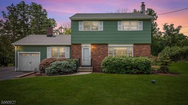 59 Huyler Rd, Branchburg Twp., NJ 08876 (MLS #3729611) :: The Dekanski Home Selling Team