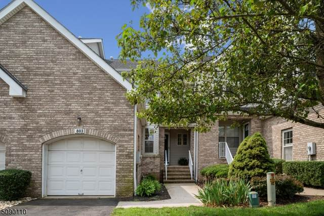 803 Taggert Dr, Montgomery Twp., NJ 08502 (MLS #3729720) :: Compass New Jersey