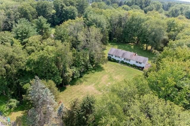344 Route 31, East Amwell Twp., NJ 08525 (MLS #3730021) :: The Dekanski Home Selling Team