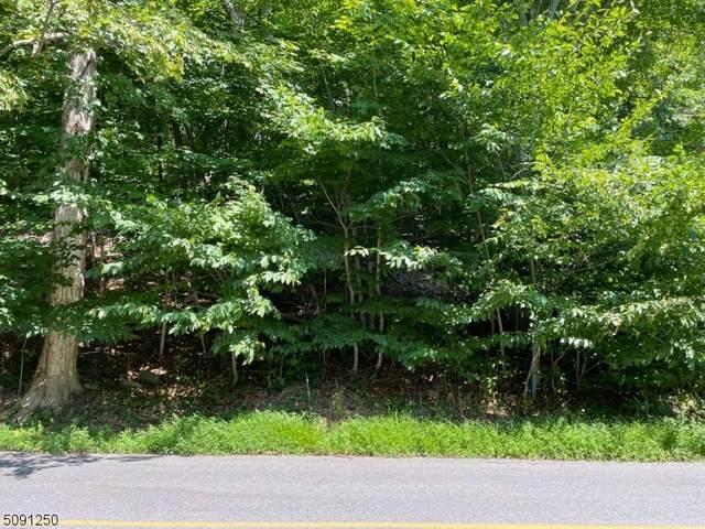 46 Valley View Dr, Rockaway Twp., NJ 07866 (MLS #3730081) :: Kaufmann Realtors
