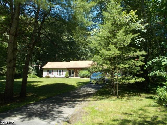 22 Lakeview Dr, Montague Twp., NJ 07827 (MLS #3730158) :: SR Real Estate Group
