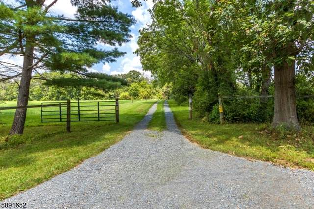 60 Frontage Rd, West Amwell Twp., NJ 08551 (MLS #3730327) :: Kay Platinum Real Estate Group