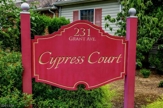 231 Grant Ave #15, Pompton Lakes Boro, NJ 07442 (MLS #3730440) :: The Karen W. Peters Group at Coldwell Banker Realty