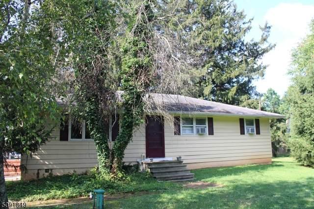 3587 Rt 22, Readington Twp., NJ 08889 (MLS #3730641) :: The Dekanski Home Selling Team