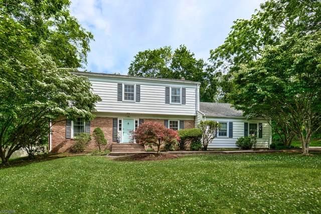 1 Ramapo Way, Peapack Gladstone Boro, NJ 07977 (MLS #3730846) :: The Dekanski Home Selling Team