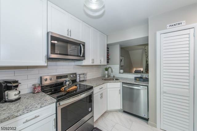 21135 West View, Wharton Boro, NJ 07885 (MLS #3731015) :: Corcoran Baer & McIntosh