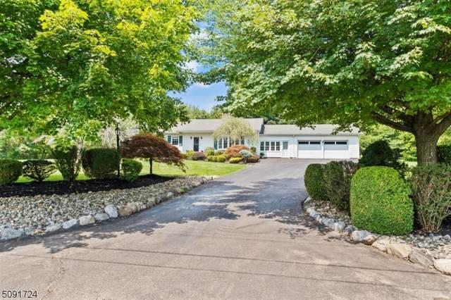 15 Green Gate Rd, Readington Twp., NJ 08833 (MLS #3731239) :: The Dekanski Home Selling Team