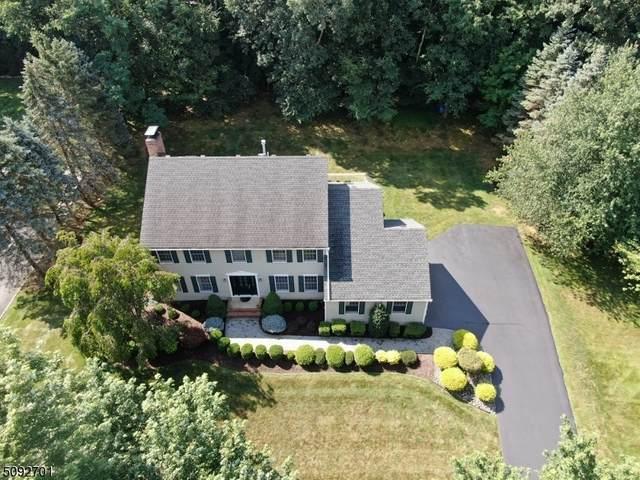 33 Morey Ln, Randolph Twp., NJ 07869 (MLS #3731299) :: SR Real Estate Group