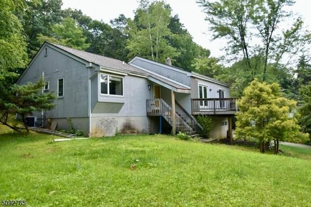 14 Longview Dr, Rockaway Twp., NJ 07866 (MLS #3731366) :: Kiliszek Real Estate Experts