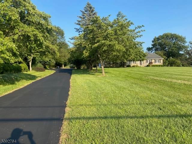48 Lazy Brook Rd, Readington Twp., NJ 08822 (MLS #3731395) :: The Dekanski Home Selling Team