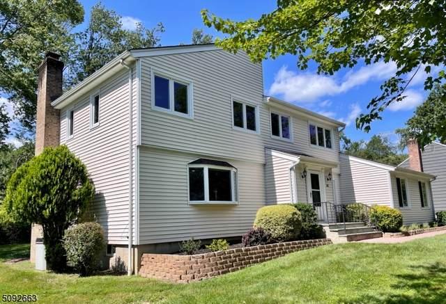 28 Dunbridge Ln, Long Hill Twp., NJ 07933 (MLS #3732173) :: The Sikora Group
