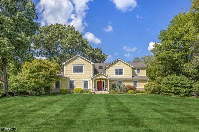 20 Mountain View Dr, Chester Twp., NJ 07930 (#3732236) :: Jason Freeby Group at Keller Williams Real Estate