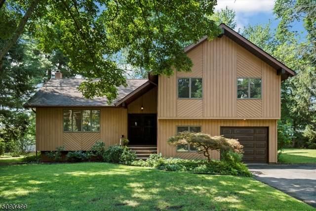15 Frances St, Piscataway Twp., NJ 08854 (MLS #3732381) :: Team Braconi   Christie's International Real Estate   Northern New Jersey