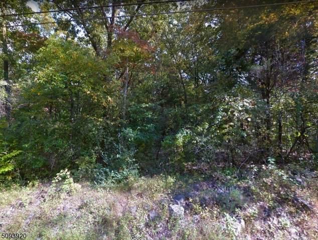 196 Federal Twist Rd, Kingwood Twp., NJ 08559 (MLS #3732471) :: The Sikora Group