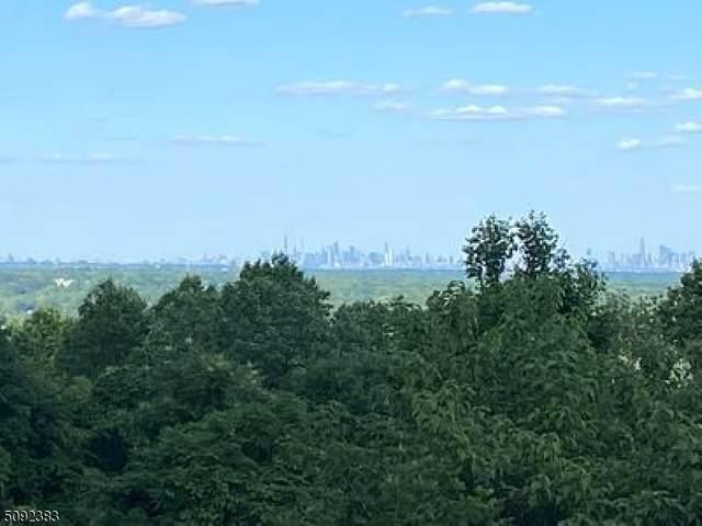 736 Johnston Drive, Watchung Boro, NJ 07069 (MLS #3732603) :: The Sikora Group