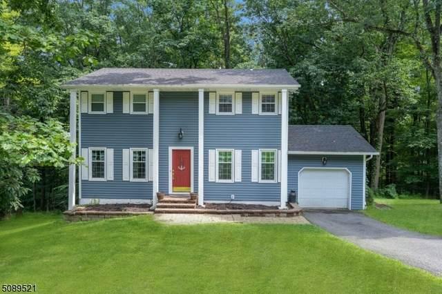 14 Edward Dr, Mount Olive Twp., NJ 07836 (MLS #3732750) :: Team Braconi | Christie's International Real Estate | Northern New Jersey
