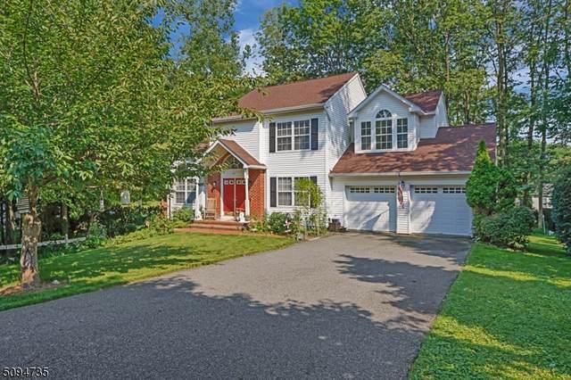 107 Canal Way, Hackettstown Town, NJ 07840 (MLS #3733111) :: Team Braconi | Christie's International Real Estate | Northern New Jersey