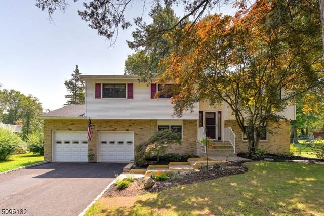 19 Dunbar Ave, Piscataway Twp., NJ 08854 (MLS #3734853) :: Team Braconi | Christie's International Real Estate | Northern New Jersey