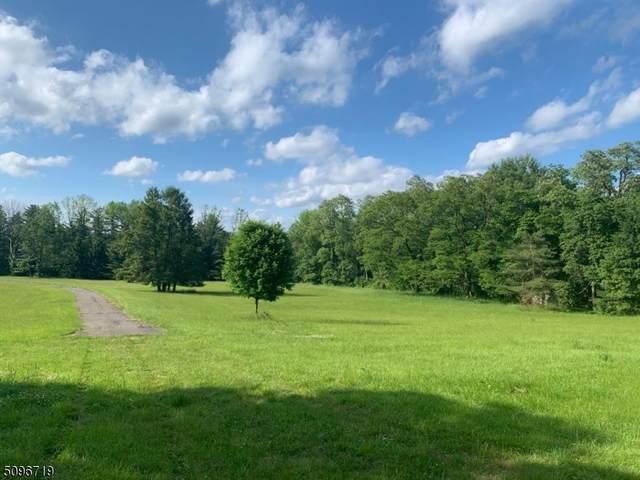 118 Village Rd, Harding Twp., NJ 07935 (#3736350) :: NJJoe Group at Keller Williams Park Views Realty