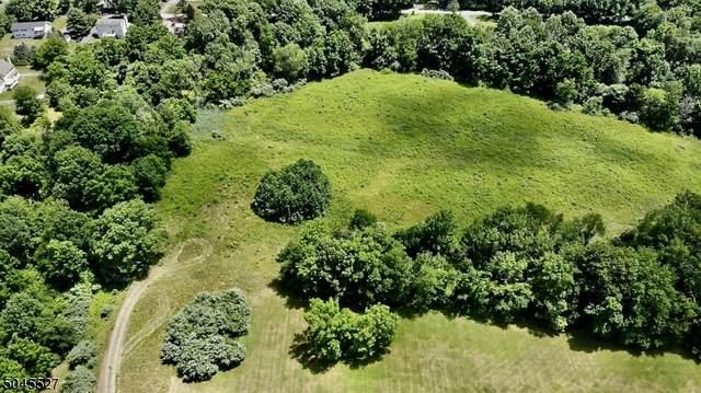 3 Stonebriar Ln, Independence Twp., NJ 07840 (#3736947) :: NJJoe Group at Keller Williams Park Views Realty