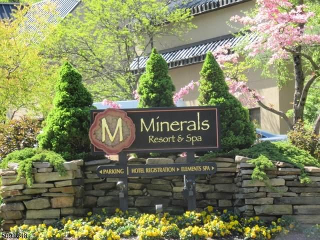 2 Chamonix Dr #523, Vernon Twp., NJ 07462 (MLS #3737617) :: Coldwell Banker Residential Brokerage