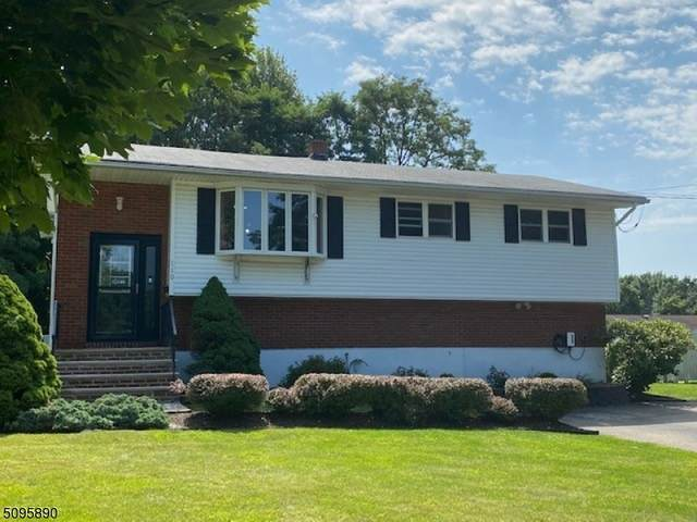 110 Louis Ln, Hackettstown Town, NJ 07840 (MLS #3737986) :: The Karen W. Peters Group at Coldwell Banker Realty