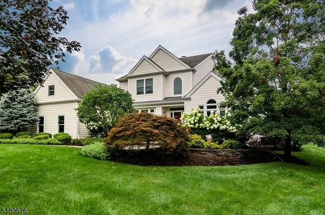 7 Saucon Valley Ct, Montgomery Twp., NJ 08558 (MLS #3738354) :: Stonybrook Realty
