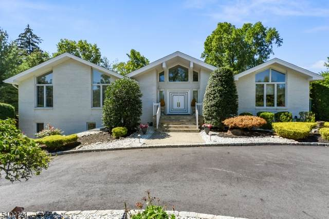 1 Skurla Ln, Hanover Twp., NJ 07981 (MLS #3738486) :: SR Real Estate Group