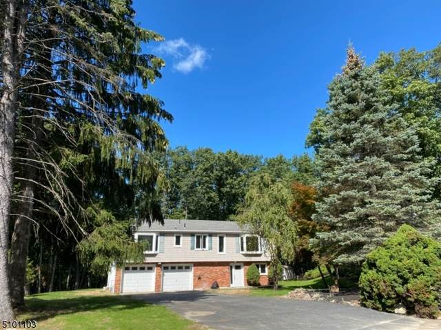 70 Shawnee Ave, Rockaway Twp., NJ 07866 (MLS #3738669) :: Stonybrook Realty