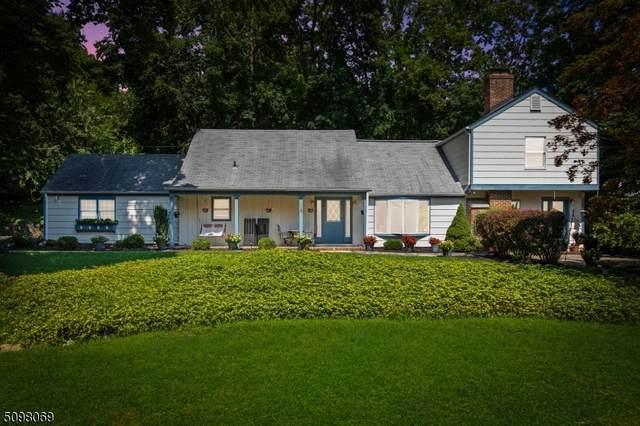 18 Gates Ave, Long Hill Twp., NJ 07933 (#3739178) :: Rowack Real Estate Team