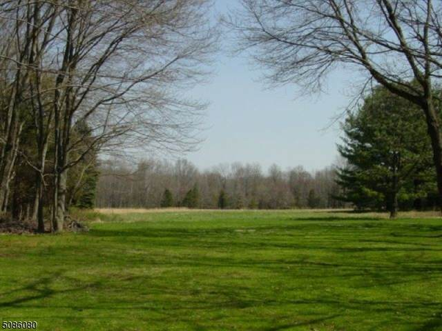 299 Douglas Rd, Bernards Twp., NJ 07931 (MLS #3739918) :: SR Real Estate Group