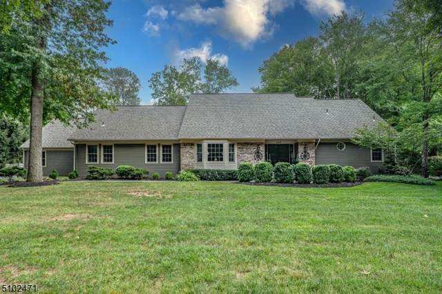 115 Shawnee Path, Long Hill Twp., NJ 07946 (#3739946) :: Rowack Real Estate Team