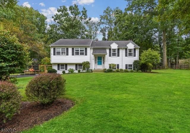 18 Stoney Brook Rd, Morris Plains Boro, NJ 07950 (MLS #3740147) :: SR Real Estate Group