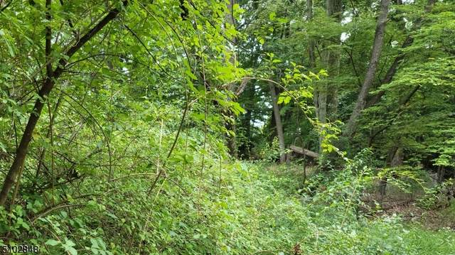 179 Fox Hill Rd, Parsippany-Troy Hills Twp., NJ 07834 (MLS #3740288) :: The Michele Klug Team | Keller Williams Towne Square Realty