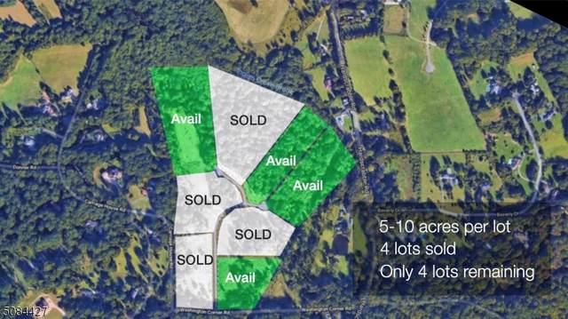 1 Preserve Lane & Rosehill, Bernardsville Boro, NJ 07924 (MLS #3740809) :: Team Braconi | Christie's International Real Estate | Northern New Jersey