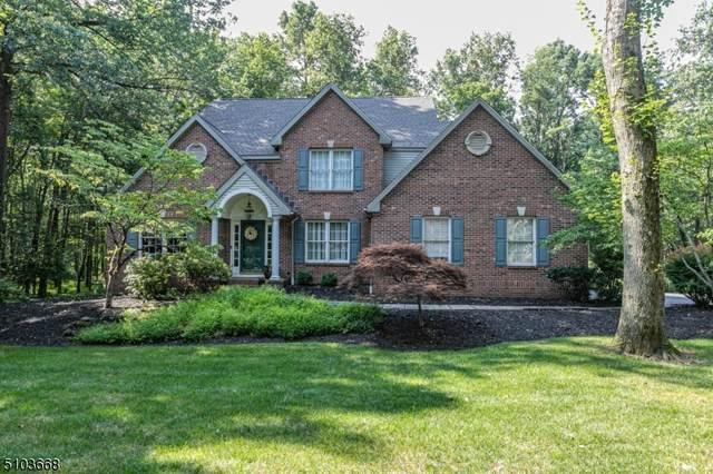 179 North St, Montgomery Twp., NJ 08502 (#3741022) :: Rowack Real Estate Team